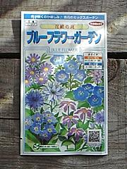 blue flower seeds